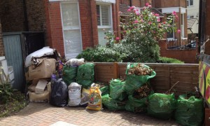 Before Rubbish removal