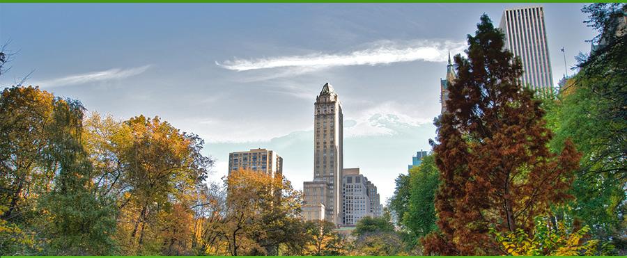 city-park-trees